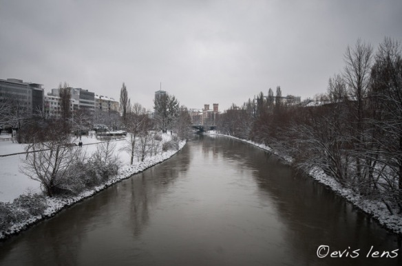 donaukanal in winter