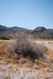 landscape-9
