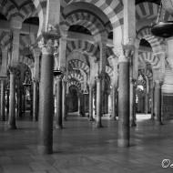 mezquita-2