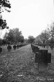 soldatenfriedhof-2