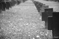 soldatenfriedhof-4