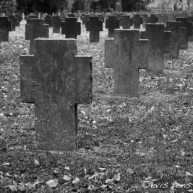soldatenfriedhof-6